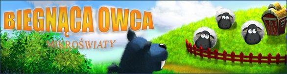 Biegnąca Owca: mikroświaty - Doprowadź owce do domu!